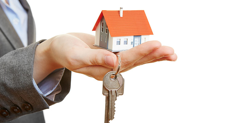 Property Handover and Care